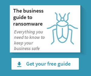 Download Pensar's business guide to ransomware